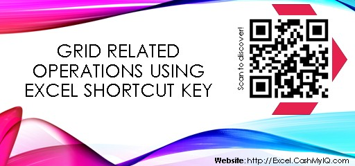 GRID RELATED OPERATIONS USING EXCEL SHORTCUT KEY