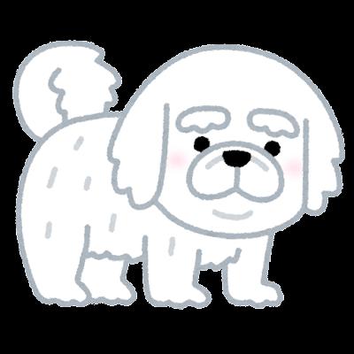 ペキニーズのイラスト(犬)