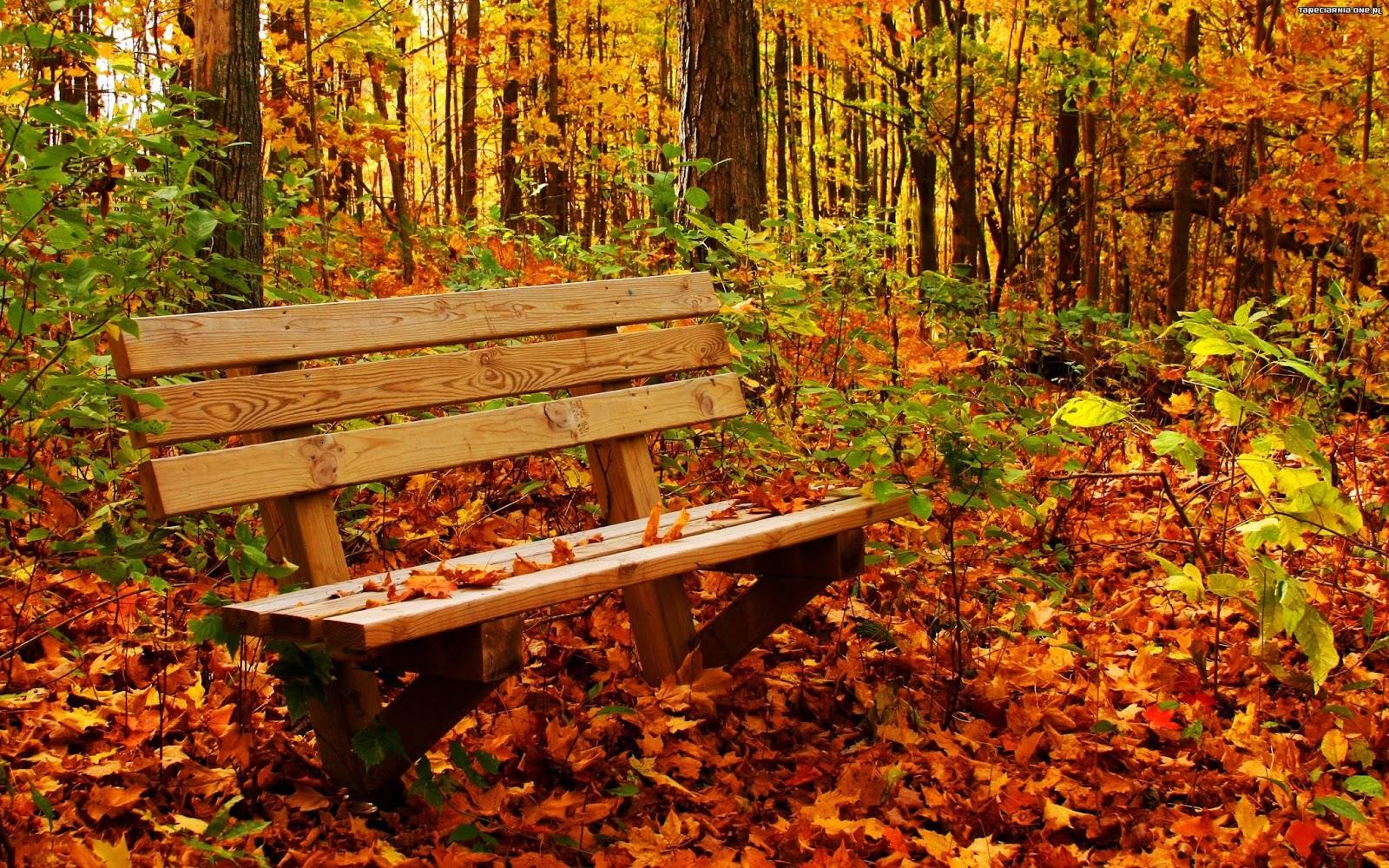 3 sposoby na jesienną chandrę.