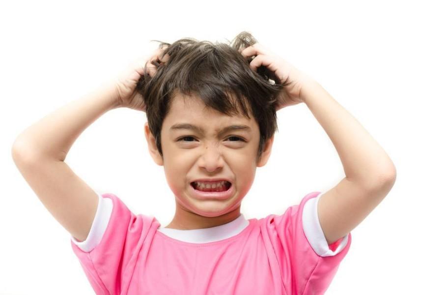 علاج القمل في المنزل عندا الاطفال طبيعيا