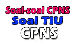 Contoh Soal dan Jawanan Tes Intelegensi Umum CPNS