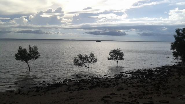 Primer atardecer en Australia desde el Parque de Darwin