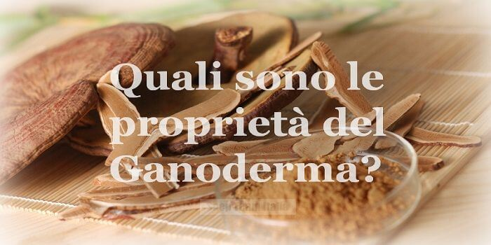 Proprietà del Ganoderma