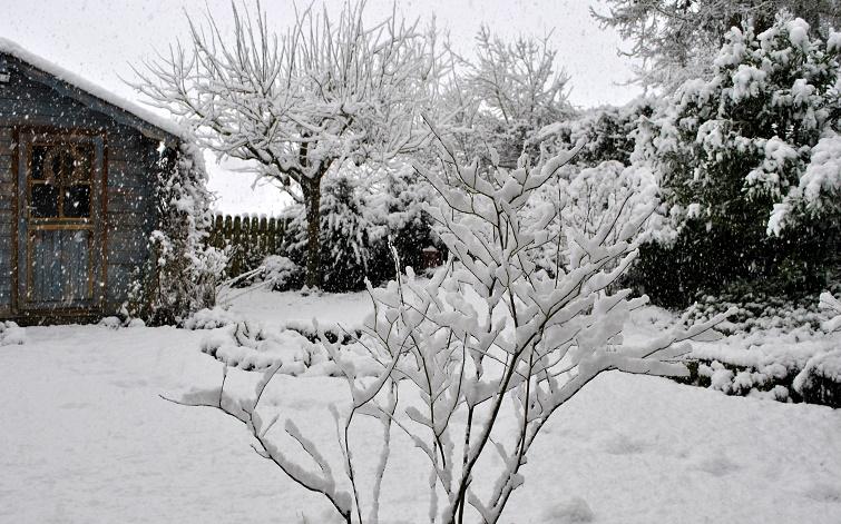 Der Garten unter einer dicken Schneedecke