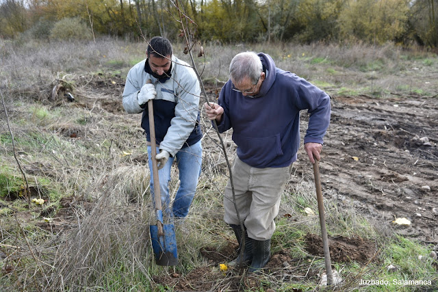 Juzbado, Salamanca, voluntariado, Tormes