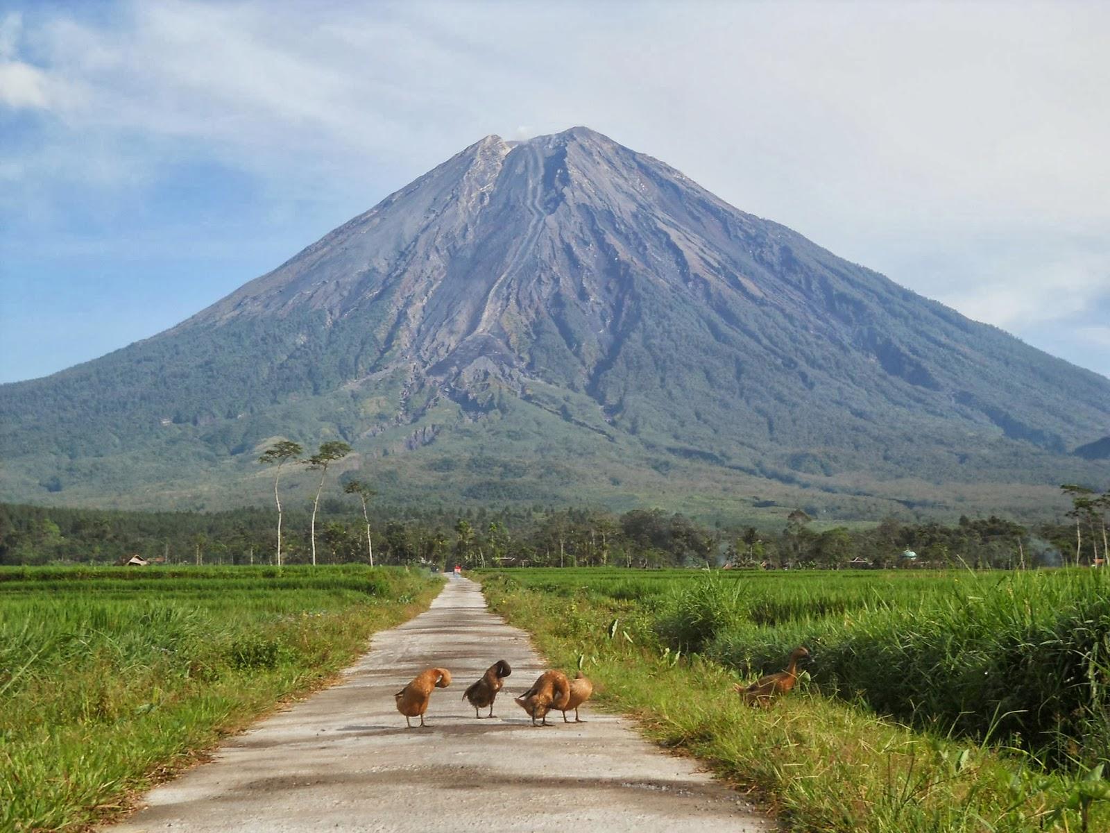Kenampakan Alam Dan Kenampakan Buatan Di Indonesia Tinta Pendidikan Indonesia