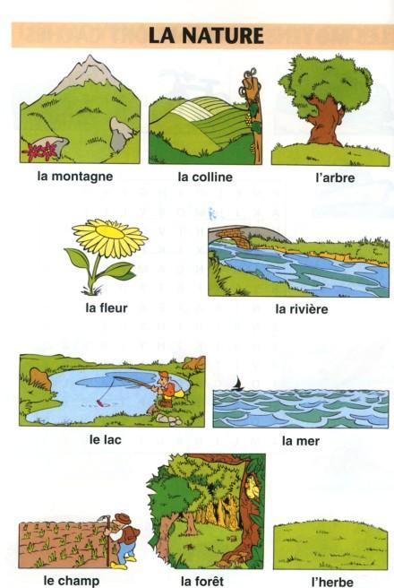 Przyroda - słownictwo 2 - Francuski przy kawie