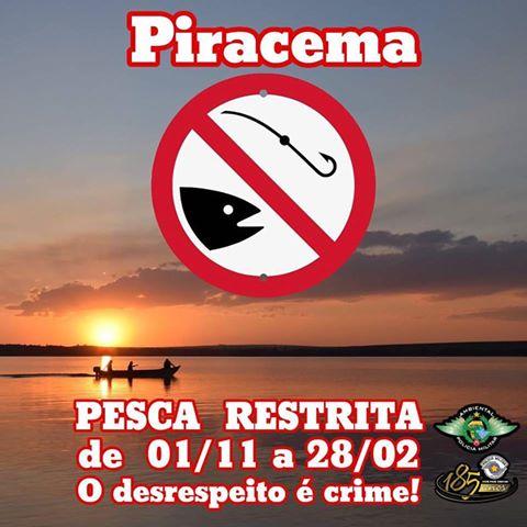 Piracema pesca restrita de 01 de novembro até 28 de fevereiro de 2017