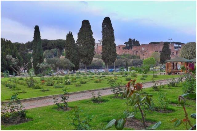 Rosas frente al Circo Máximo en Roma