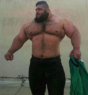 el villano arrinconado, Sajad Gharibi, WWE