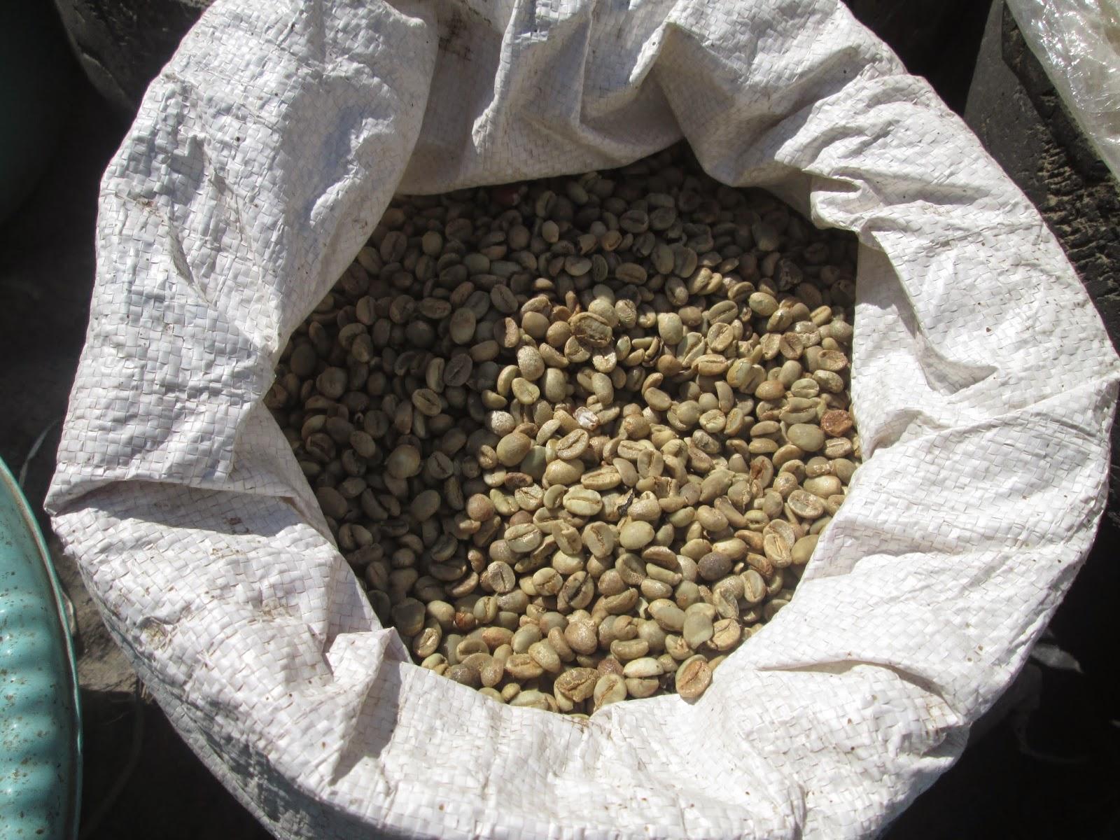 kopi beras