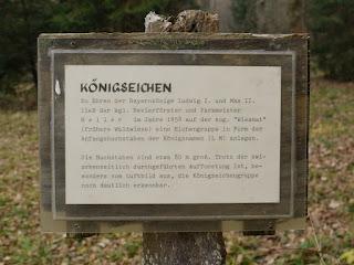 Königseichen im Forstenrieder Park