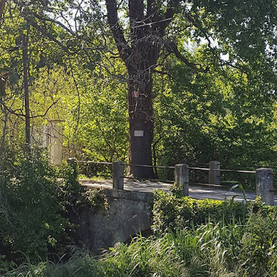 Provence Printemps Pont Nature Spring