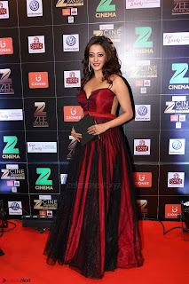 Bollywood Celebrities on the Red Carpet Of Zee Cine Awards 2017 Exclusive 116.JPG