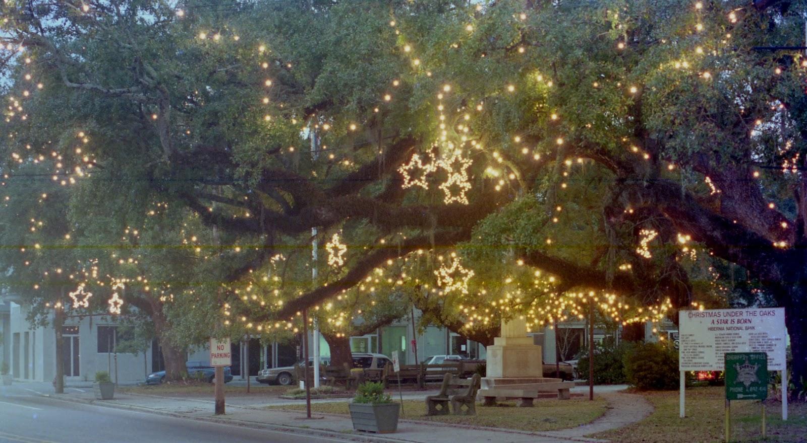 Christmas Under The Oaks.Tammany Family Christmas Under The Oaks