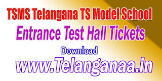 TSMS Telangana TS Model School Inter Entrance Test Hall Tickets Download