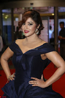 Payal Ghosh aka Harika in Dark Blue Deep Neck Sleeveless Gown at 64th Jio Filmfare Awards South 2017 ~  Exclusive 091.JPG