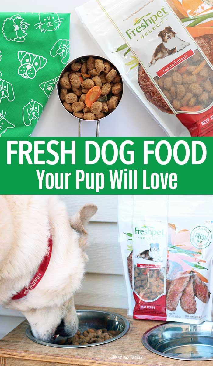 Looking for fresh, all natural dog food your pet will love? Find out what happened when our dog tried Freshpet! #ad #dogfood #freshpet #dogs