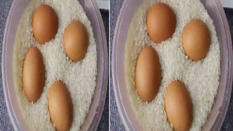 Coba Deh Kamu Taruh Telur Mentah ke Dalam Beras,Hasilnya Bakal Buat Kamu Melongo dan Akan Keterusan Melakukan Hal Ini !!