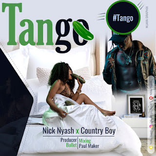 Audio Nicky Nyash ft Country boy - Tango Mp3 Download