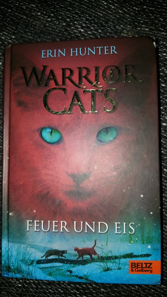 Warrior Cats-In die Wildnis-CD[4]-[Deutsch]