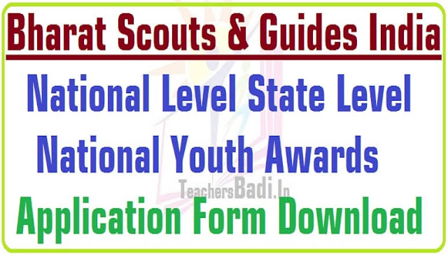 State Level,National Youth Awards 2016,Application Form