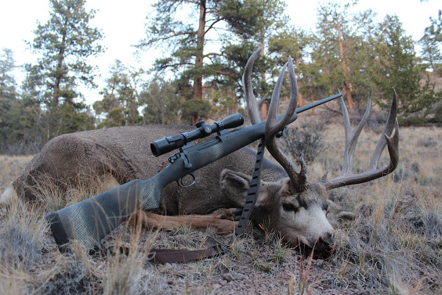 7x57 anyone? | Sniper's Hide Forum