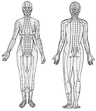 ALEKSANDER MILUNOVIC- Medicina Tradicional Chinesa: Os..