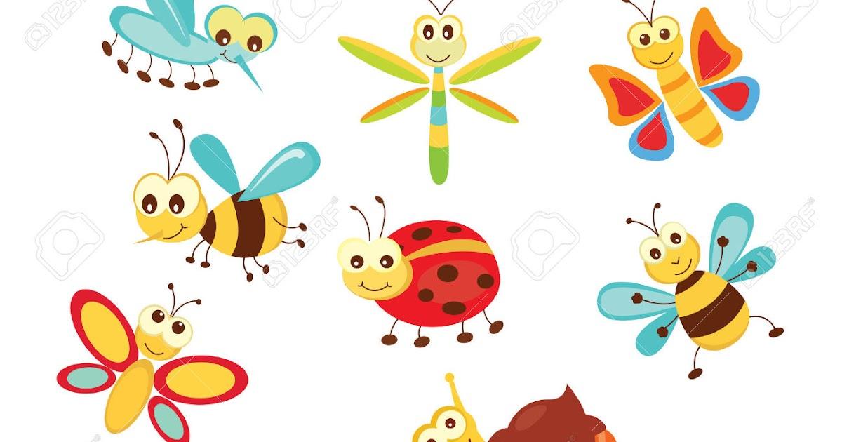 El color favorito de los bichos | Bienvenidos al Medio Ambiente