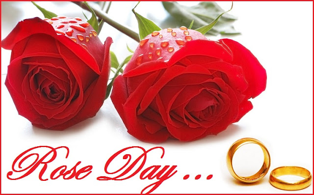 Significance of Rose day