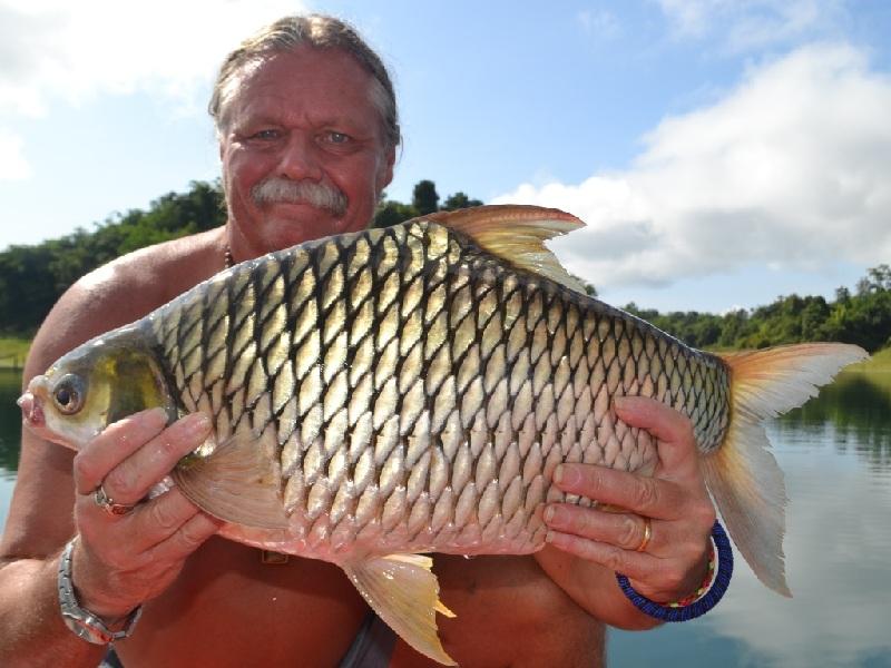 ikan tawes terbesar