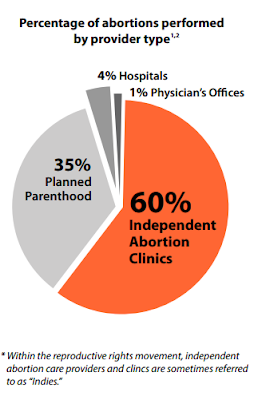 Graphc of the percentage of abortion s performed by provider type