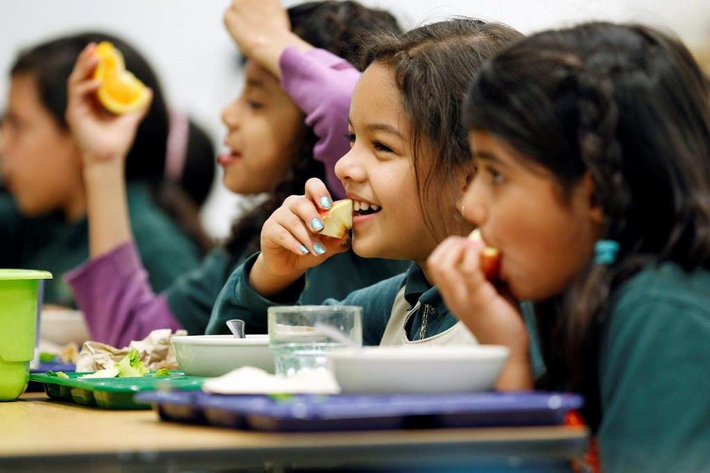 Hãy chọn một chế độ ăn phù hợp cho con của bạn