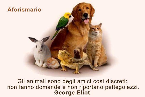 Eccezionale Aforismario®: Animali - Aforismi, frasi e proverbi DR25