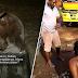 'Kalau betul budak ni mati, korang tunggu polis cari korang' - Netizen