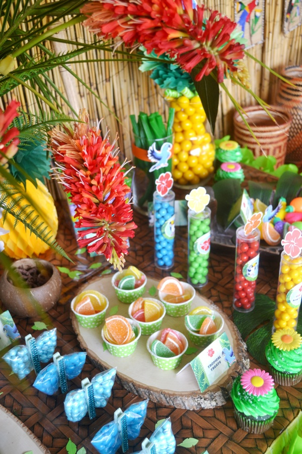 Rio 2 Movie Inspired Birthday Party