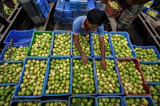 Mercado de Goiaba em Bangladesh