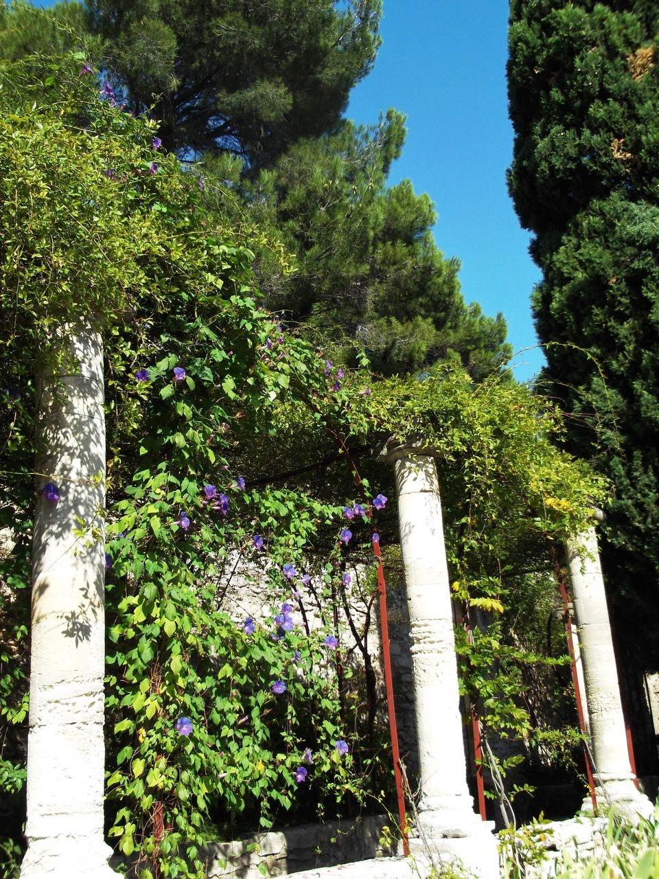 ecole cheval paysage les jardins remarquables de provence. Black Bedroom Furniture Sets. Home Design Ideas