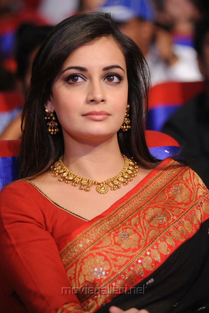 Ameesha Patel goes desi at her Cannes debut ~ SanShiny