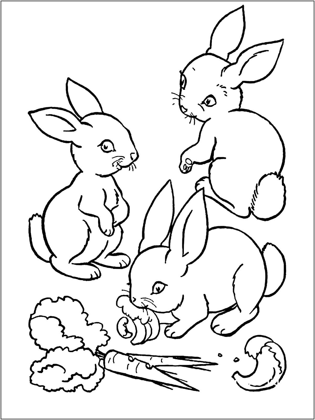 Tranh tô màu ba con thỏ ăn cà rốt