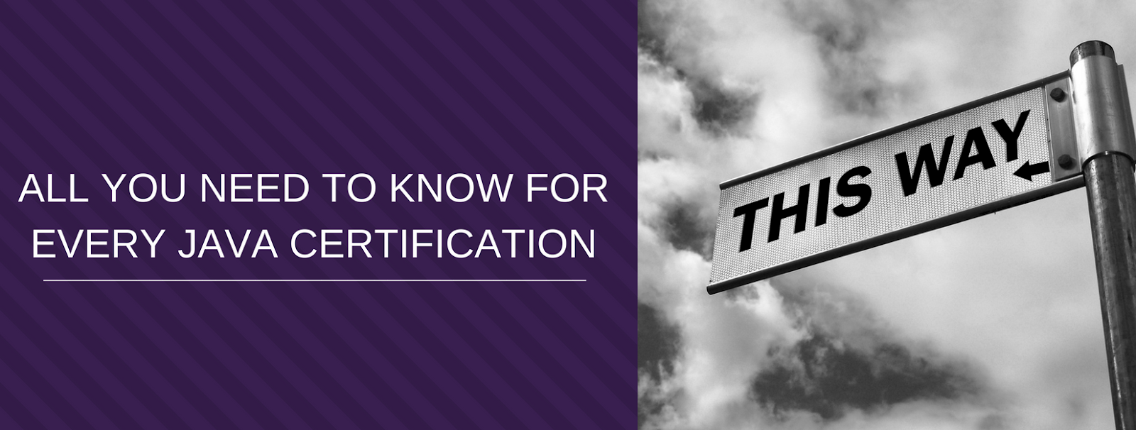 Oracle Cloud Computing Saas Paas Iaas Certification Exams Guide
