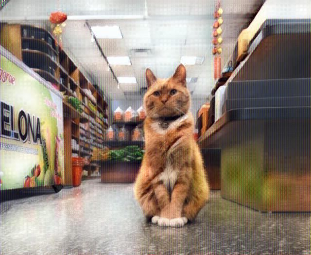Gato Bobo en su tienda de Nueva York