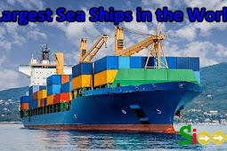 6 Largest Sea Ships in the World