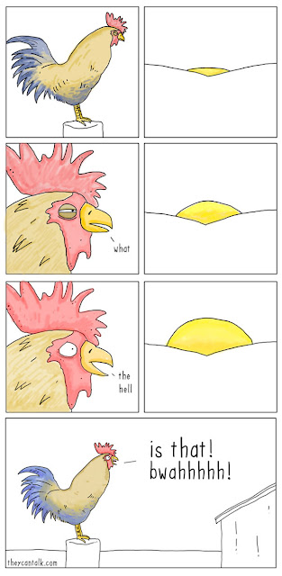 Cockerel trips out seeing the sun