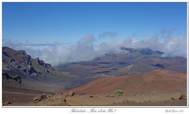 Haleakala: How about Me?