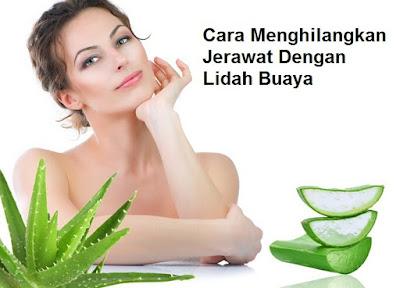 10 obat alami untuk menghilangkan jerawat di wajah - manfaat kecantikan kulit