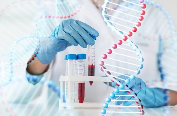 Giám định ADN ở đâu uy tín?