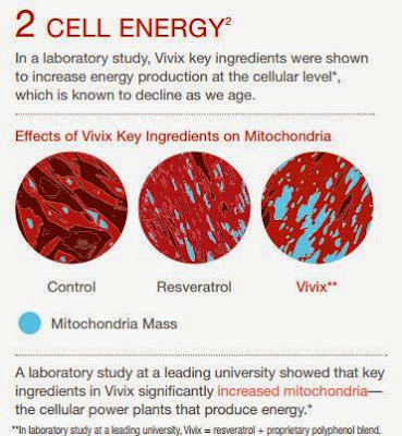 cell energy