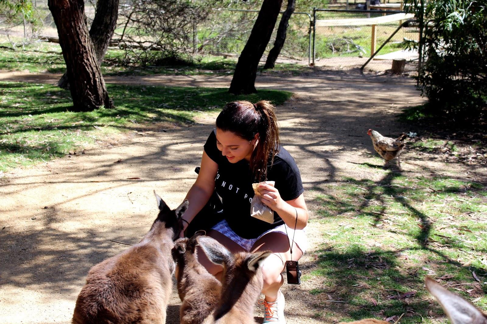 Urumbirra Wildlife Park