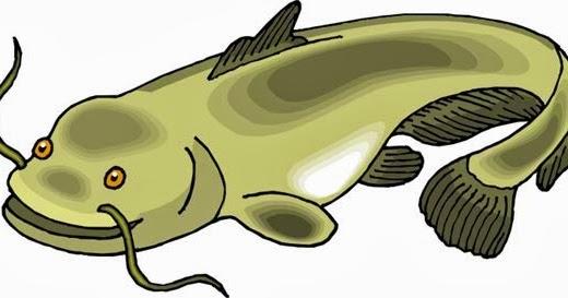 БиблиоСправочка: Чудо-юдо рыба сом